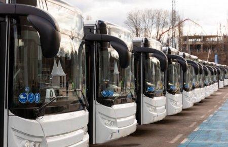 TRANSCAR SRL - o companie de transport de succes!