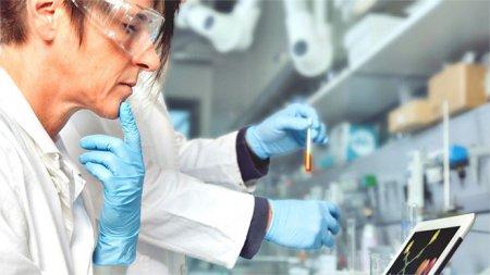 <span style='background:#EDF514'>THAILANDA</span> va demara studii clinice pe oameni