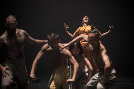 Zece spectacole de neratat la Festivalul de Teatru de la Sibiu, care incepe astazi
