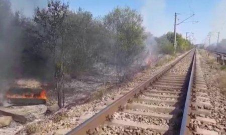 Incendiu de vegetatie in judetul Dolj. Traficul feroviar este ingreunat