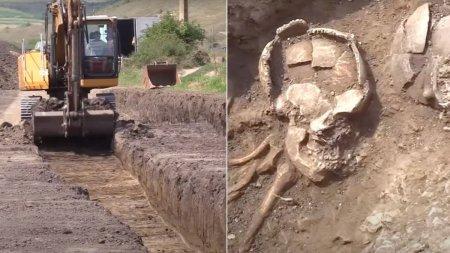 Peste 100 de <span style='background:#EDF514'>MORMINTE</span>, vechi de 6.000 de ani, si un cimitir celtic, descoperite in Cluj