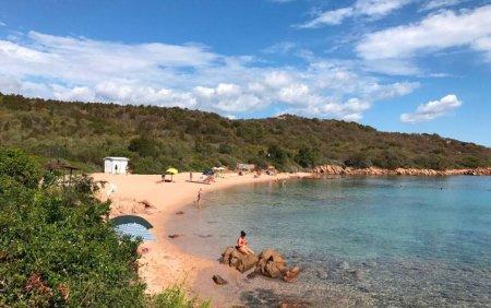 Zeci de kilograme de ni<span style='background:#EDF514'>SIPI</span> de pe plajele din Sardinia sunt furate si vandute pe internet