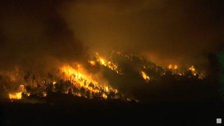 Apocalipsa climatica e reala. Arde pamantul! Flacarile se apropie de Atena VIDEO