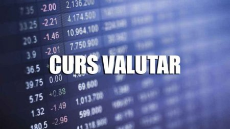 Curs valutar 24 august BNR. Ce se intampla cu Euro si Dolarul marti, dupa ce Leul s-a apreciat slab la inceput de saptamana