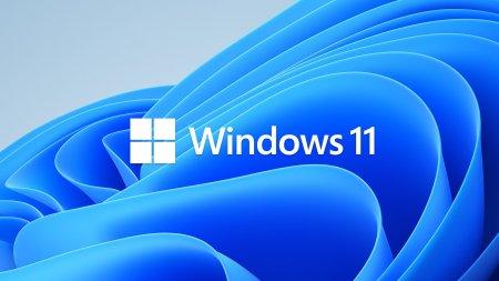 Jumatate dintre utilizatorii <span style='background:#EDF514'>WINDOW</span>s ar fi dispusi sa faca upgrade la <span style='background:#EDF514'>WINDOW</span>s 11
