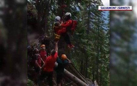 Un turist a fost salvat de salvamontisti dupa ce a cazut in gol mai bine de 30 de metri, in masivul <span style='background:#EDF514'>PIATRA CRAIULUI</span>