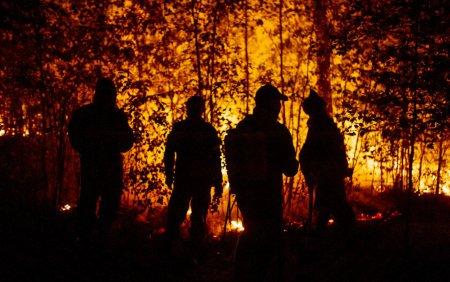 Incendiile forestiere extreme fac ravagii in centrul Rusiei