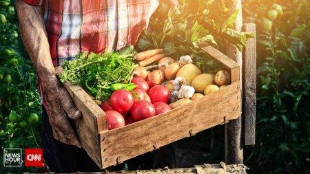 Romania, tara paradoxurilor. Preturile cresc in magazine, in timp ce fermierii dau faliment: Ne ducem la pierzanie