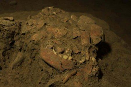 Oasele unei adolescente care a murit acum mai bine de 7.000 de ani au dezvaluit povestea unui grup uman necunoscut