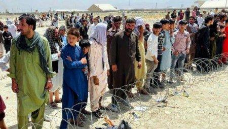 Bulgaria va acorda azil pentru aproximativ 70 de cetateni afgani si familiile acestora
