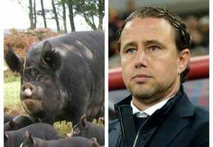 Nu numai Becali are oile sale! Laurentiu Regecampf detine o ferma de oi si porci in localitatea miliardarilor, Snagov