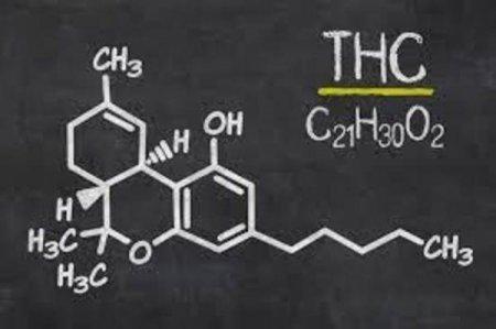 APC a sesizat <span style='background:#EDF514'>DIICOT</span> cu privire la substanta psihotropa tetrahidrocanabinol din alimentele retrase de LIDL de la vanzare