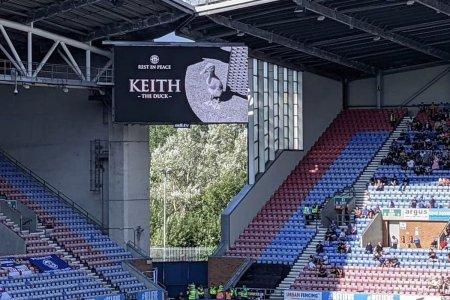 Intre timp, in Anglia » Moment de reculegere pentru o rata pe nume Keith