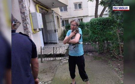 O <span style='background:#EDF514'>PISICA</span> a fost salvata dupa ce a cazut in gol de la etajul patru al unui bloc din judetul Vaslui. FOTO