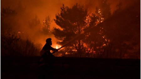 Incendiile din Grecia au un impact devastator asupra albinelor