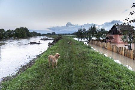 A venit potopul in Romania! Peste 140 de case au fost afectate de viituri