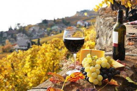 Un canton elvetian ofera 100 de sticle de vin celor care implinesc 100 de ani