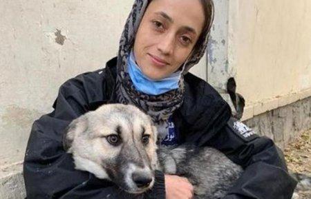 Nici animalele nu sunt uitate in Afganistan. Un fost militar a reusit sa evacueze 200 de caini si pisici din tara greu incercata