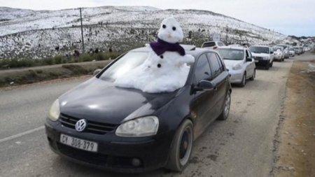 VIDEO A nins in Africa de Sud!