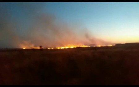 Zeci de hectare de vegetatie uscata au ars in Sl<span style='background:#EDF514'>ATINA</span>. Militarii s-au luptat mai bine de 3 ore cu flacarile