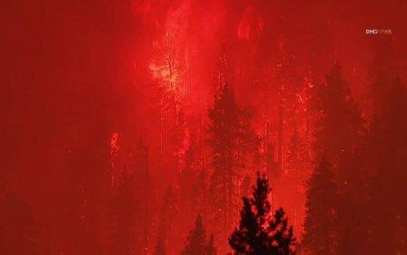 Dezastru in <span style='background:#EDF514'>CALIFORNIA</span> in urma incendiilor de vegetatie. Aproape toti locuitorii unui oras au fost evacuati