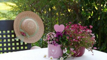 Ce sa oferim cadou: aranjamente florale sau buchete de flori