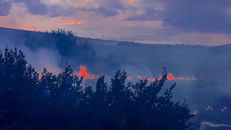 Incendiu puternic de vegetatie in Tulcea. Focul a cuprins aproximativ 10 hectare de stuf