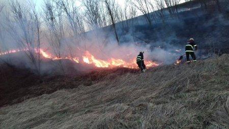 Incendiu puternic de vegetatie in Tulcea. Cate hectare au ars