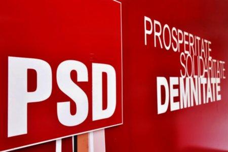 PSD a publicat textul motiunii de cenzura impotriva Guvernului Citu