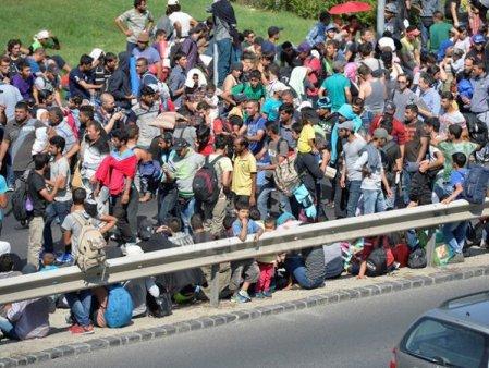 Polonia declara stare de urgenta la frontiera cu Belarus pe fondul unui val de migratie ilegala