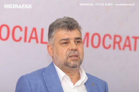 COMENTARIU Sorin Avram: La munca, Marcel Ciolacu, nu la cersit mila pe la televizor