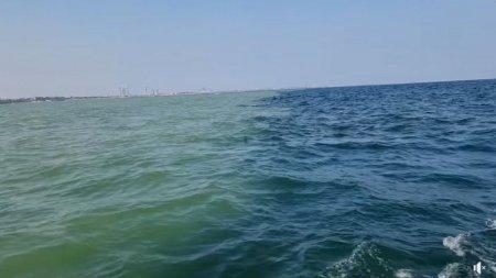 Fenomen neobisnuit la <span style='background:#EDF514'>EFORIE</span> Nord: Marea s-a impartit in doua culori, care nu se amesteca