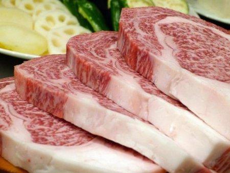 Japonezii au creat prima bucata de carne sintetica