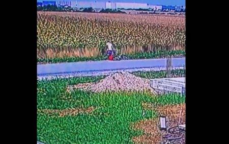 Un barbat a fost filmat aruncand mai multi <span style='background:#EDF514'>CATELUS</span>i in pungi. A fost identificat si amendat