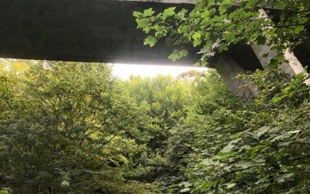 <span style='background:#EDF514'>ACCIDENT S</span>pectaculos provocat de un adolescent de 16 ani, din Valcea. A zburat de pe pod cu masina de la 20 de m inaltime