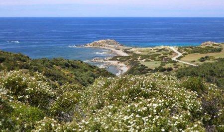 Roman amendat in Italia pentru ca a furat pietricele de pe plaja din Sardinia