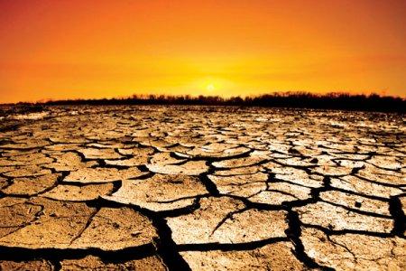 Schimbarile climatice reprezinta o ingrijorare pentru cercetatori: Rata anuala a mortalitatii la sfarsitul acestui secol ar putea creste cu 73 de decese la 100.000 de oameni numai din cauza temperaturilor ridicate