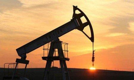 Peste 80% din productia de petrol din Golful Mexic este inca oprita dupa uraganul Ida