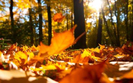 Vremea astazi, 9 septembrie. Zile calduroase la inceput de toamna
