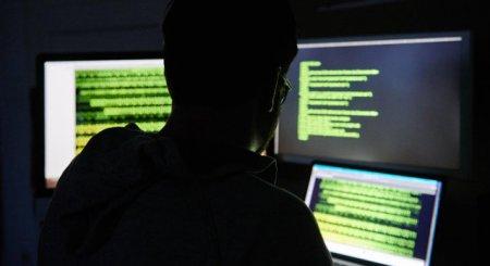 Germania a lansat o ancheta privind atacuri cibernetice lansate din Rusia asupra unor parlamentari
