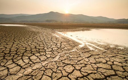 A fost declarata stare de dezastru in K<span style='background:#EDF514'>ENYA</span> din cauza perioadei extinse de seceta
