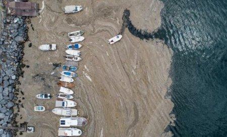 Dezastru <span style='background:#EDF514'>ECOLOGIC</span>? Mucilagiul marin a invadat coastele Turciei