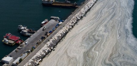 Mucilagiul marin din Marea Marmara risca sa se transforme intr-un dezastru <span style='background:#EDF514'>ECOLOGIC</span> regional. Si Romania ar putea fi afectata