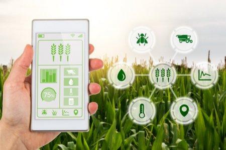 <span style='background:#EDF514'>AGROLAND</span> Agribusiness, cu obligatiuni de 10 mil. lei la bursa, si-a majorat profitul de peste doua ori in S1/2021, la venituri de 13 mil. lei, plus 33%. Compania se afla in discutii pentru a pune bazele unei linii proprii de produse organice