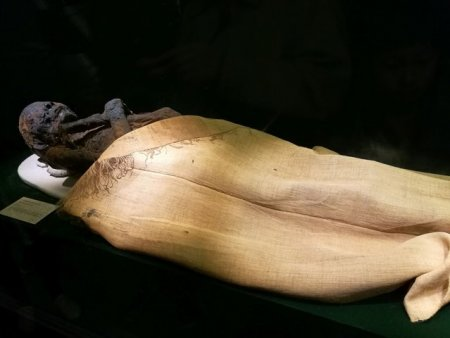 Un barbat si-a mumificat mama decedata pentru a primi in continuare pensia ei. Cum a fost gasit <span style='background:#EDF514'>CADAVRUL</span>