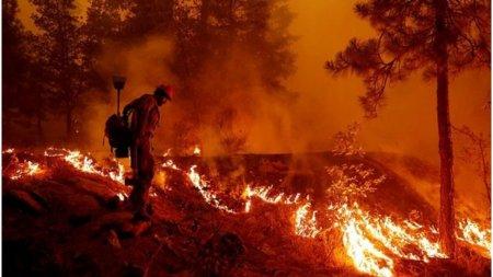 Incendiile fac ravagii in sudul Spaniei: 1 pompier a murit si 1.000 de oameni au fost evacuati