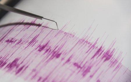 Cutremur de 4,2 grade pe scara Richer in zona seismica <span style='background:#EDF514'>VRANCEA</span>