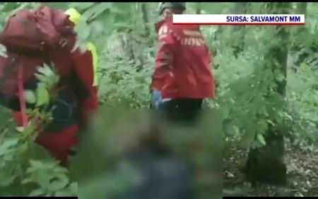 Moarte suspecta in Targu Lapus. <span style='background:#EDF514'>TRUPUL</span> neinsufletit al unui barbat de 73 de ani a fost gasit intr-o padure