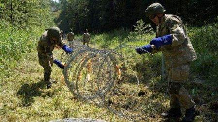 Parlamentul lituanian a extins puterile armatei la granita cu Belarus