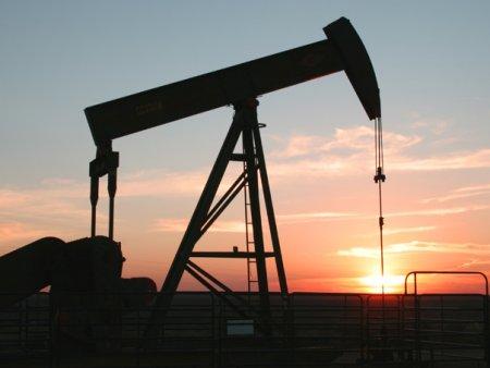 Alegerile care ar putea decide viitorul petrolului si al gazului. Problemele climatice au fost in centrul campaniei electorale